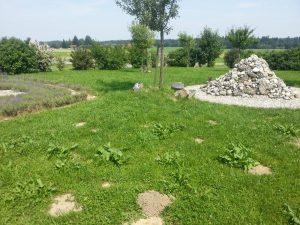 Garten des Friedens 3