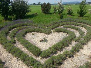 Garten des Friedens 1